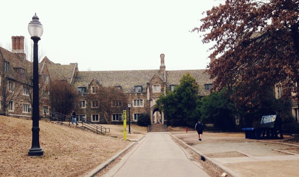 I really enjoy Duke University's traditional campus vibe.