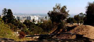 View of L.A. from Runyon Canyon