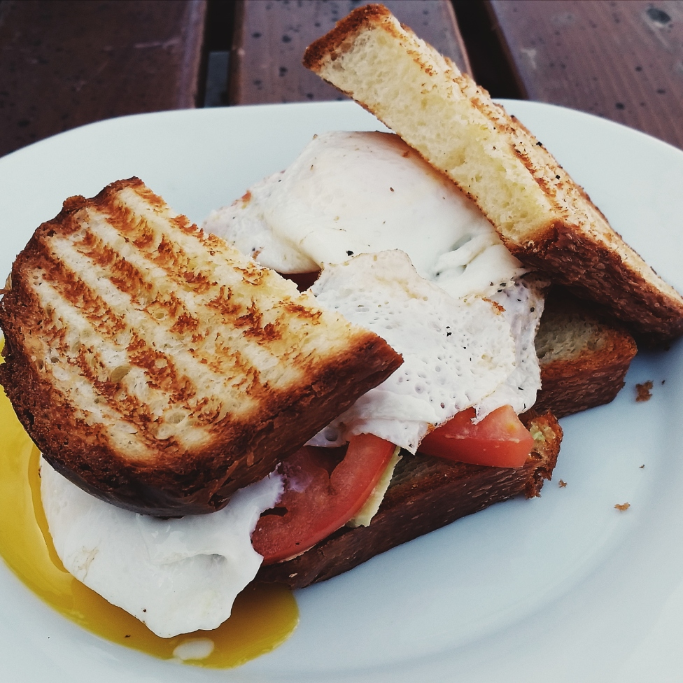 Tatte Bakery & Café avocado and egg breakfast sandwich