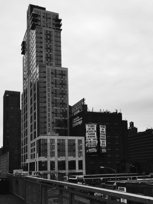 View of high rises from High Line