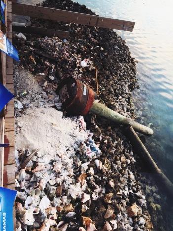 Graveyard of conch shells at Fish Fry