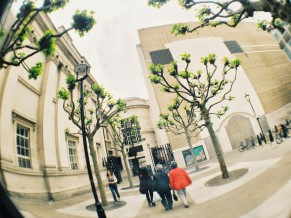 Walking to Trafalgar Square