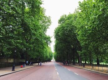 Walking from Buckingham Palace