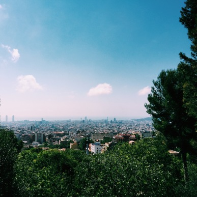 View from top of Parc Guell