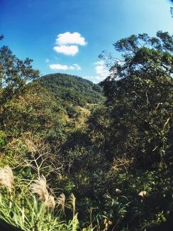 Maokong view