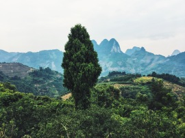 Hiking views in Yangshuo