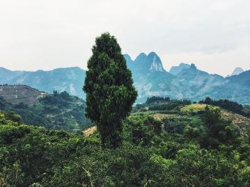 Hiking views in Yangshuo