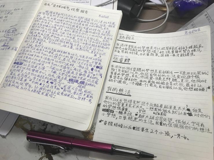 Chinese homework overload