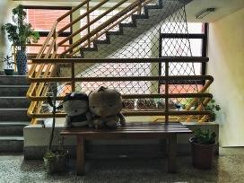 Cute dolls randomly found in a school hallway.